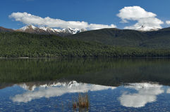 Te Anu, Новая Зеландия Стоковое Изображение RF