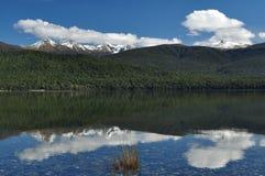 Te Anu, Neuseeland Lizenzfreies Stockbild