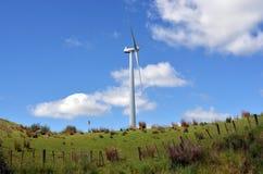 Te Apiti风力场在北帕莫斯顿,新西兰 库存照片