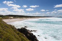 Te Arai Beach. Summer at Te Arai Beach, New Zealand Stock Photos