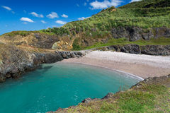 Te Arai Beach. Summer at Te Arai Beach, New Zealand Stock Images