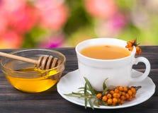 Te av hav-buckthorn bär med honung på suddig trädgårds- bakgrund för trätabell Royaltyfri Foto