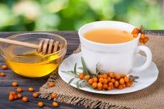 Te av hav-buckthorn bär med honung på suddig trädgårds- bakgrund för trätabell royaltyfria foton