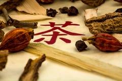 Te av?? traditionell kinesisk medicin Royaltyfria Foton