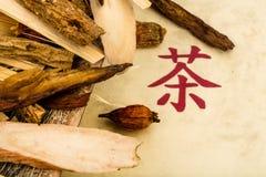 Te av?? traditionell kinesisk medicin Royaltyfri Bild
