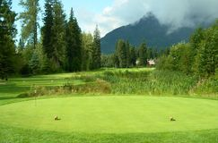 Te del campo de golf del rectángulo Fotos de archivo libres de regalías