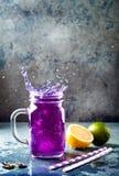 Te eller lemonad för blått för blomma för fjärilsärta med is Växt- drink för sund detox arkivbild