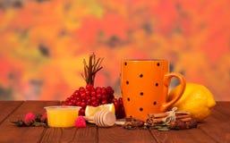 Te från citronen och guelder-ros med honung arkivfoton