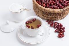 Te från nypon på en vit bakgrund Royaltyfri Fotografi