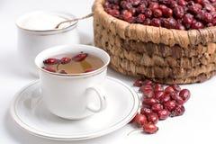 Te från nypon på en vit bakgrund Arkivbilder