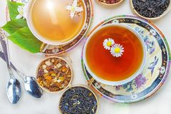 Te fruktte, kopp te, olika sorter av te, te på tabellen Royaltyfria Bilder