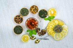 Te fruktte, kopp te, olika sorter av te, te på tabellen Royaltyfri Fotografi