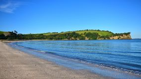 Te Haruhi Bay escénico en el parque regional de Shakespear Fotografía de archivo libre de regalías