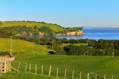 Te Haruhi Bay escénico en el parque regional de Shakespear Imagen de archivo