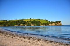 Te Haruhi Bay scenico al parco regionale di Shakespear Fotografia Stock Libera da Diritti
