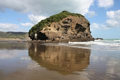 Te Henga Beach. Te Henga - Bethells Beach near Auckland, New Zealand. Tasman Sea Stock Photo