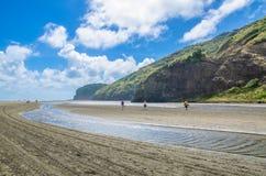 Te Henga (Bethells strand) är en kust- gemenskap i den Auckland regionen i norden av den norr ön, Nya Zeeland Royaltyfri Fotografi