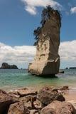 Te Hoho Rock arkivfoton