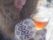 Te i den nätta kvinnan för vinterskog A dricker te i kallt väder royaltyfri foto
