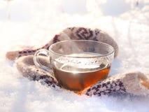 Te i den nätta kvinnan för vinterskog A dricker te i kallt väder arkivfoton