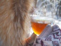Te i den nätta kvinnan för vinterskog A dricker te i kallt väder royaltyfri bild