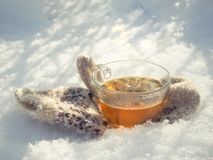 Te i den nätta kvinnan för vinterskog A dricker te i kallt väder royaltyfria foton