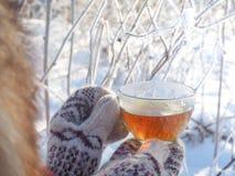 Te i den nätta kvinnan för vinterskog A dricker te i kallt väder arkivbild