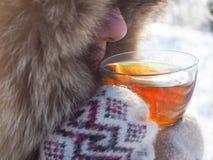 Te i den nätta kvinnan för vinterskog A dricker te i kallt väder royaltyfria bilder