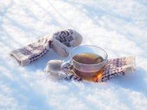 Te i den nätta kvinnan för vinterskog A dricker te i kallt väder arkivfoto