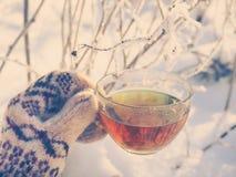 Te i den nätta kvinnan för vinterskog A dricker te i kallt väder fotografering för bildbyråer