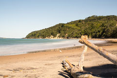 Te Karo Bay, Coromandel, New Zealand Stock Images