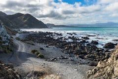 Te Kopahou Reserve Royalty Free Stock Images