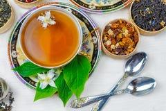 Te kopp te, olika sorter av te, te med jasmin Royaltyfria Bilder