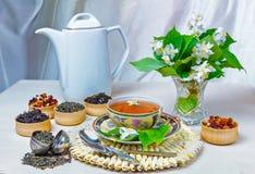 Te kopp te, olika sorter av te, te med jasmin Arkivfoto