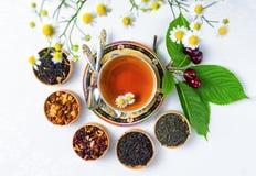 Te kopp te, olika sorter av te, te på tabellen Royaltyfri Bild
