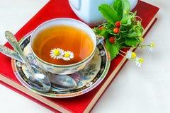 Te kopp te, olika sorter av te, te på tabellen Royaltyfria Foton