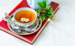 Te kopp te, olika sorter av te, te på tabellen Royaltyfri Foto