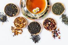 Te kopp te, olika sorter av te, te på tabellen Royaltyfria Bilder