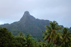 Te Manga berg i den Rarotonga kocken Islands Arkivbilder