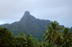 Te Manga-berg in Rarotonga Cook Islands Stock Afbeeldingen