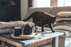 Te med ånga i rum i morgonsolljus Arkivfoto