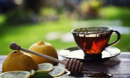 Te med citronen och mintkaramellen i natur En kopp av varmt mintkaramellte med le Royaltyfria Bilder