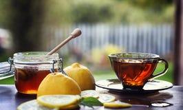 Te med citronen och mintkaramellen i natur En kopp av varmt mintkaramellte med le Arkivfoton