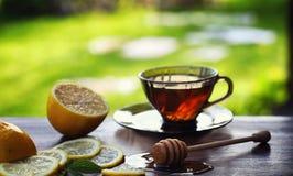 Te med citronen och mintkaramellen i natur En kopp av varmt mintkaramellte med le Royaltyfria Foton