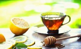 Te med citronen och mintkaramellen i natur En kopp av varmt mintkaramellte med le Arkivbild