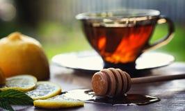 Te med citronen och mintkaramellen i natur En kopp av varmt mintkaramellte med le Royaltyfri Fotografi