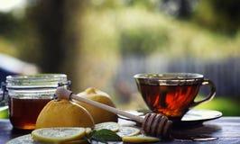 Te med citronen och mintkaramellen i natur En kopp av varmt mintkaramellte med le Arkivfoto