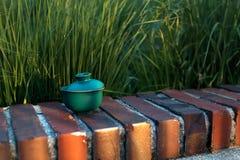 Te med den orange skivan i en traditionell japansk kopp eller bunke med ett lock Royaltyfri Foto