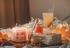 Te med denbuckthorn bär och ingefäran på sidor för gamla böcker, honung-, stearinljus- och höst Atmosfären av komfort hemma cozy royaltyfri bild