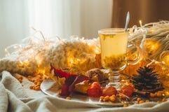 Te med denbuckthorn bär och ingefäran på sidor för gamla böcker, honung-, stearinljus- och höst Atmosfären av komfort hemma cozy royaltyfri foto